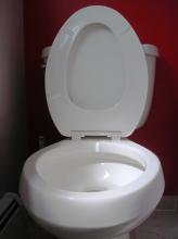 toilet seat argument
